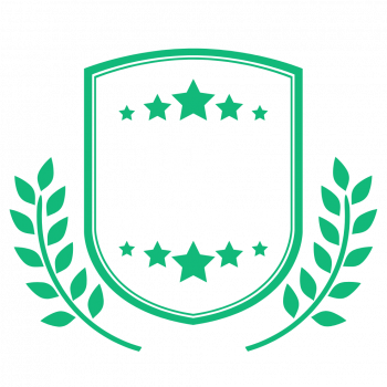 10 years experience green PNG